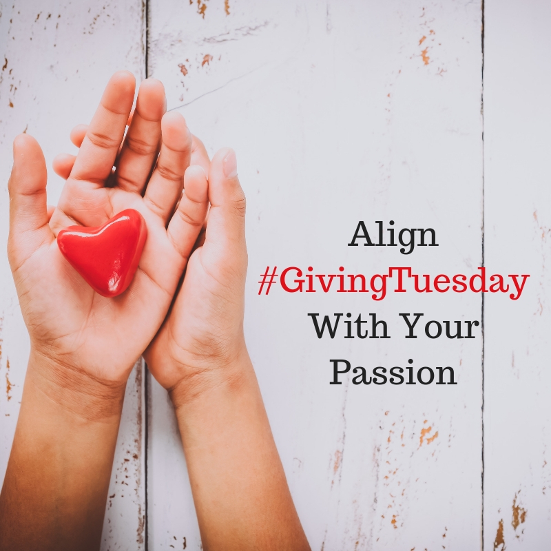 Giving Tuesday Align With Your Passion